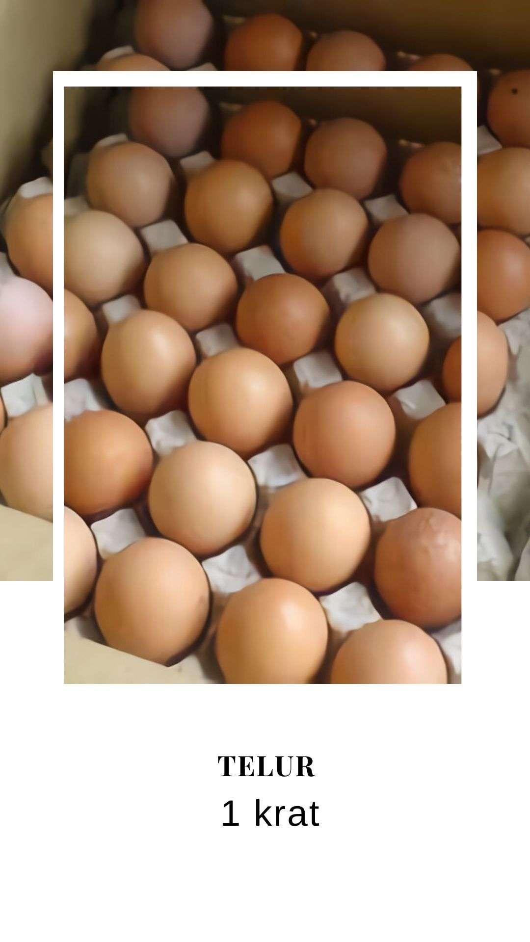 Masak telur di rumah